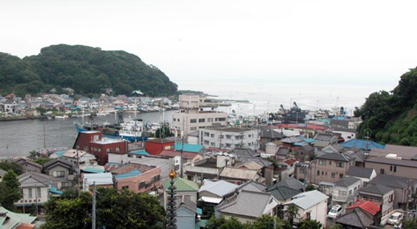 11月5日は津波防災の日 津波にどう備える?